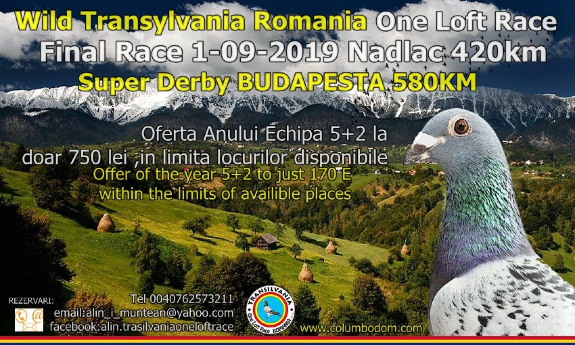 Columbodrom Transilvania